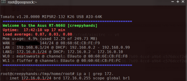 tomato-see-new-bridge-vlan-ssh